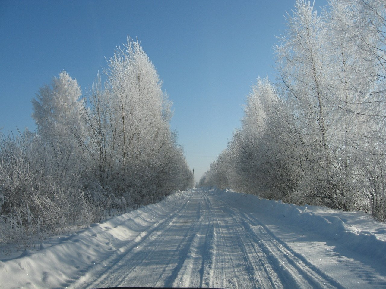 заснеженная дорога